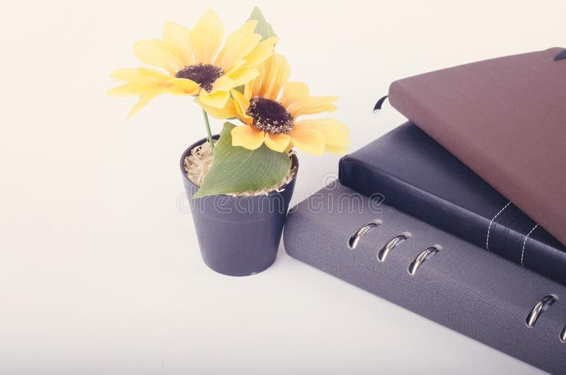 Stacking diaries and artificial flower plant on white background. Negative space for text stock image