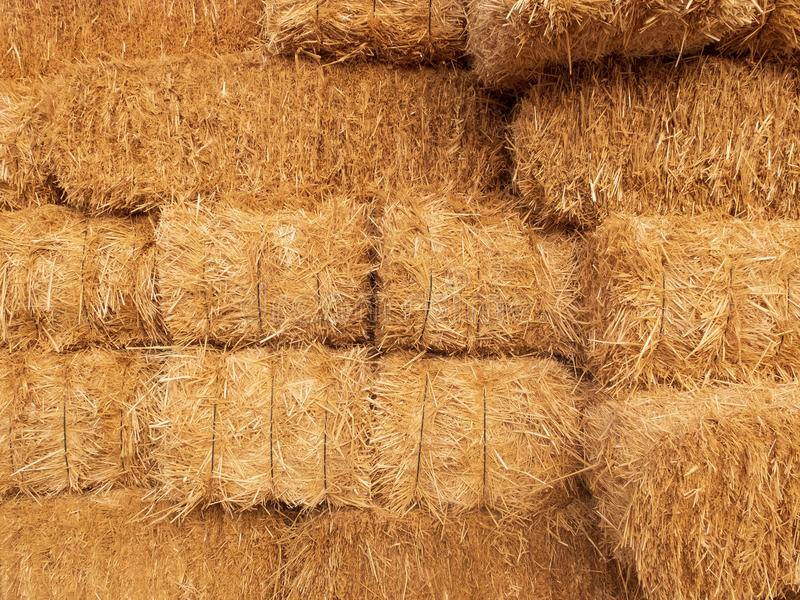 Stacks of dry straw. Piled straw haystacks. Natural dry straw texture background stock photos