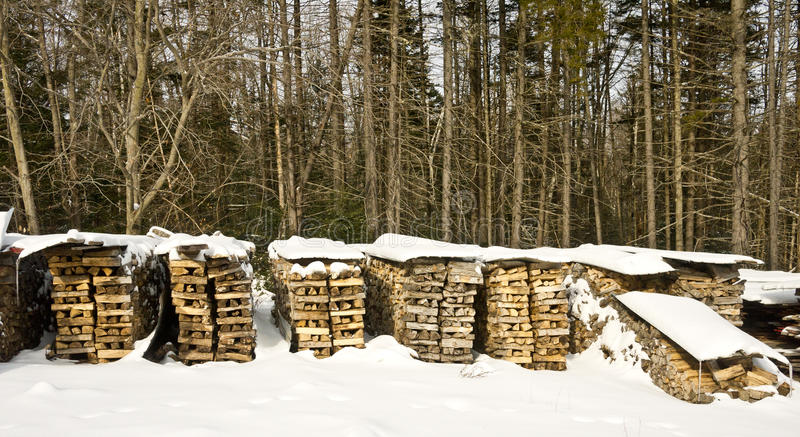 Stacks of Firewood royalty free stock photography