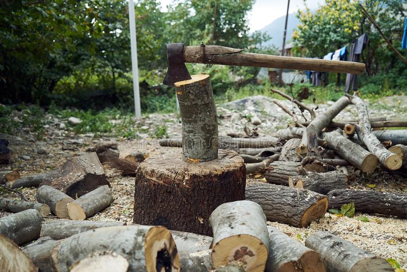 Stacks of firewood in the forest, close-up. royalty free stock image