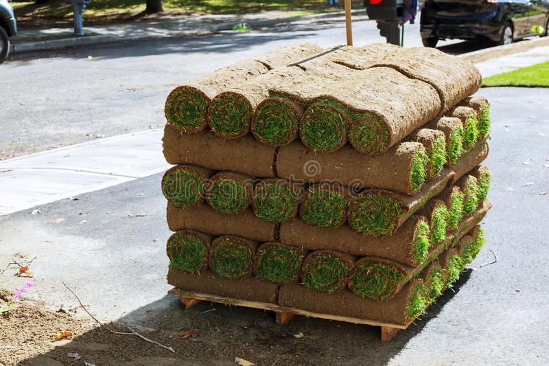 stacks of sod rolls for new lawn royalty free stock images