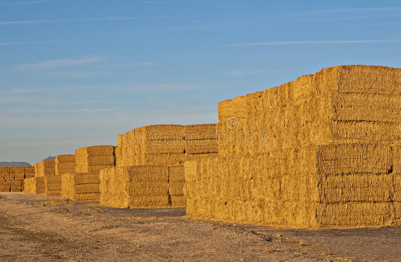 Stacks of Hay