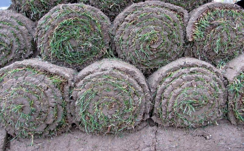 Stacks of sod rolls royalty free stock images