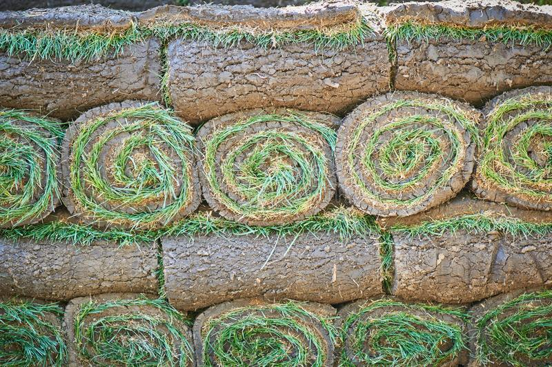 Stacks of sod rolls for new lawn. Background stock photos
