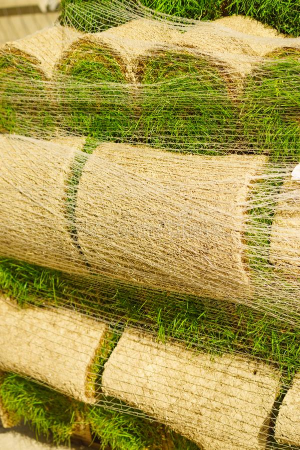 Stacks of sod rolls for new lawn stock photography