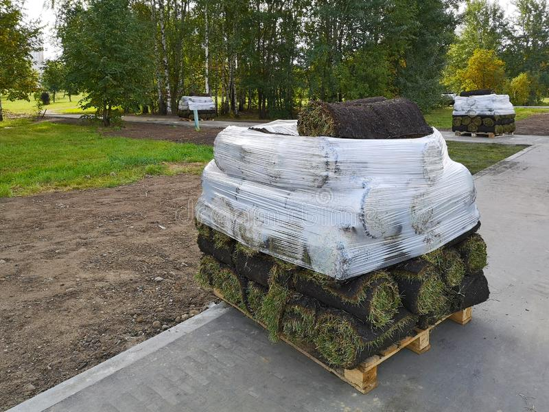 Stacks of sod rolls on pallets for new lawn royalty free stock photography