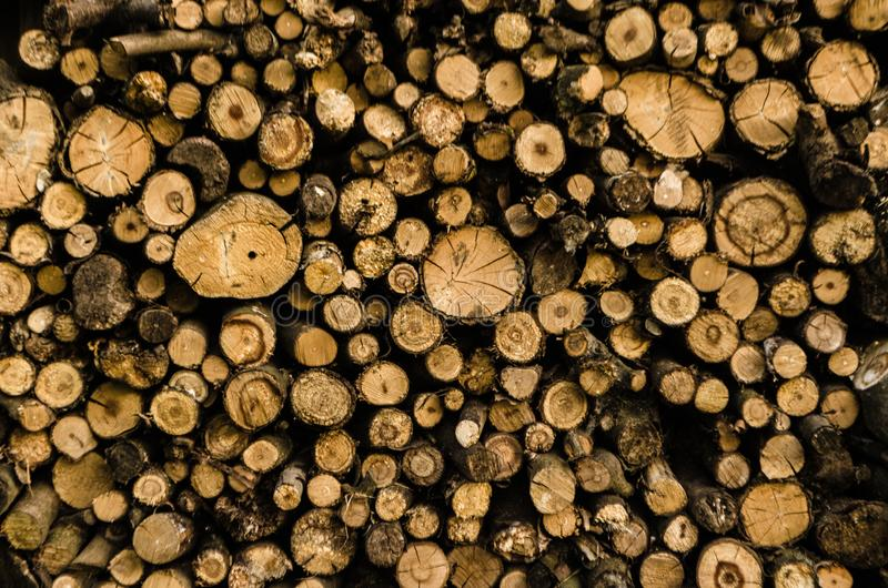 Stacks wood timber background. Pile of wood logs storage for industry. Saws cut wood logs. Wood texture background.  royalty free stock photos