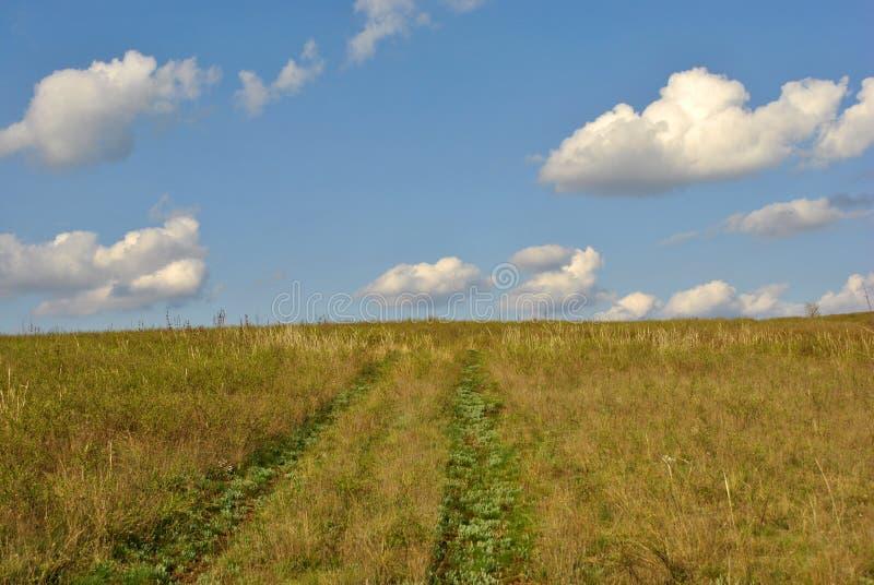 Staczająca się wiejska droga na suchej trawy łące na wzgórzu, chmurny niebo, wiosna słoneczny dzień zdjęcie stock