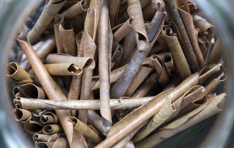 Staczający się susi tytoni liście, zakończenie w górę, makro- obraz stock
