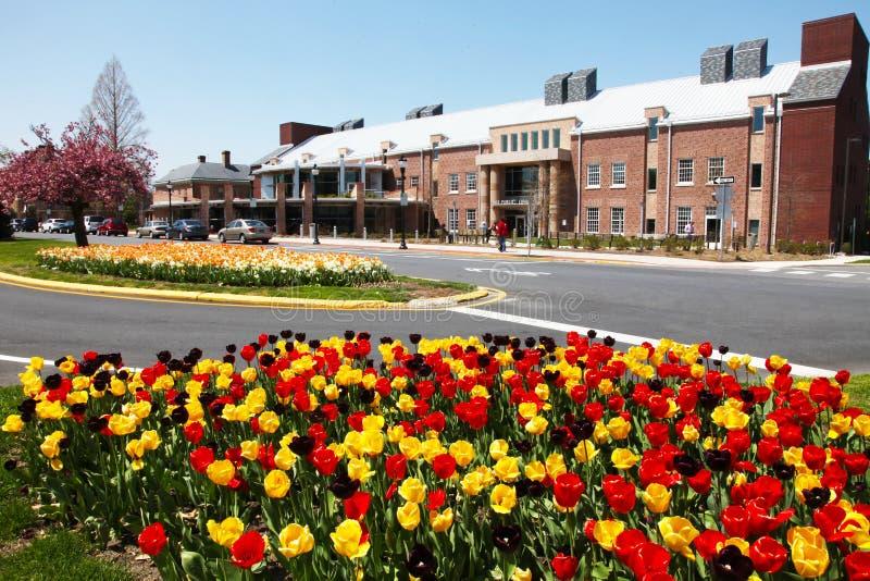 Stad av Dover, Delaware arkiv på våren arkivfoto