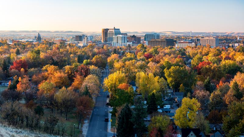 Stad av färg för nedgång för trädBoise Idaho horisont oavkortad royaltyfri foto