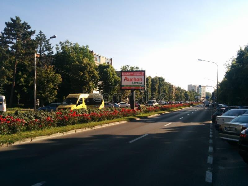 Stad av tulpan i Rumänien royaltyfria bilder