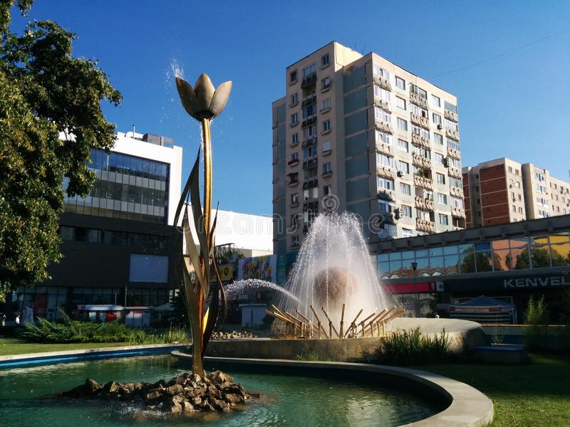 Stad av tulpan i Rumänien arkivfoto