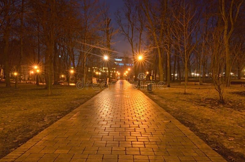 Stad bij nacht de stad in van Kyiv, de Oekraïne Een verlaten weg in Taras Shevchenko Park Een paar uren vóór dageraad royalty-vrije stock foto's