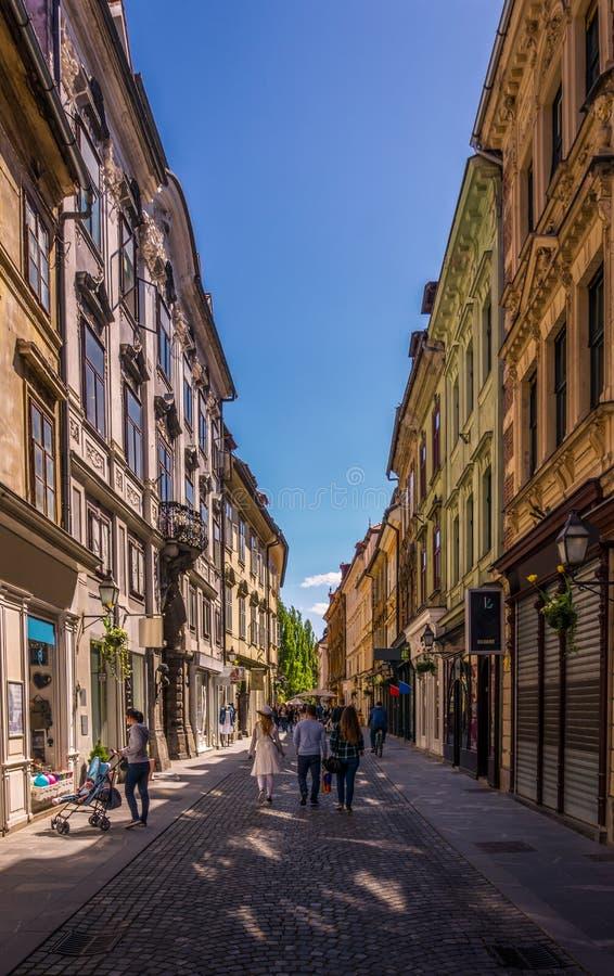 Stad för mittod Ljubljana arkivbild