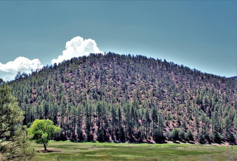 Stad van Stervallei, Gila County, Arizona, Verenigde Staten, het Nationale Bos van Tonto stock fotografie