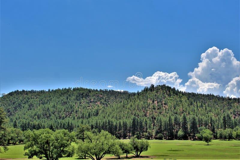 Stad van Stervallei, Gila County, Arizona, Verenigde Staten, het Nationale Bos van Tonto stock afbeelding