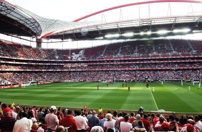 Stade du football ou de football photo libre de droits