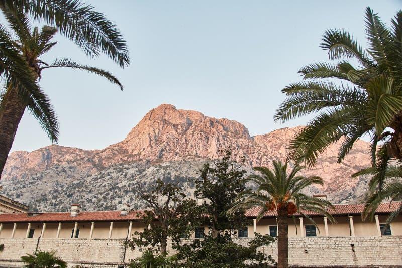 Staden av Kotor gammal town gammal vägg för stad Berg beskådar Montenegro royaltyfri fotografi