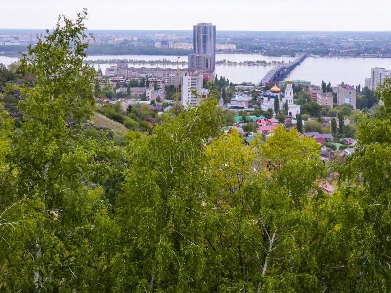 Staden av Saratov, Ryssland Vägbro över Volgaet River mellan städerna av Saratov och Engels Vår gröna träd royaltyfri bild