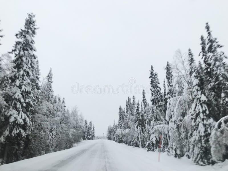 staden n?ra den j?rnv?g v?gen skiner snowsunen f?r att ?vervintra tr? arkivbilder