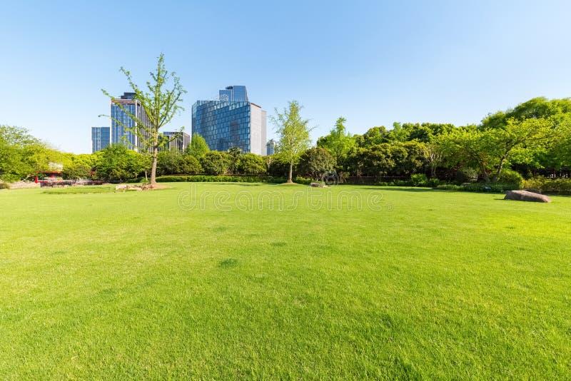 Staden parkerar gräsmatta arkivbild