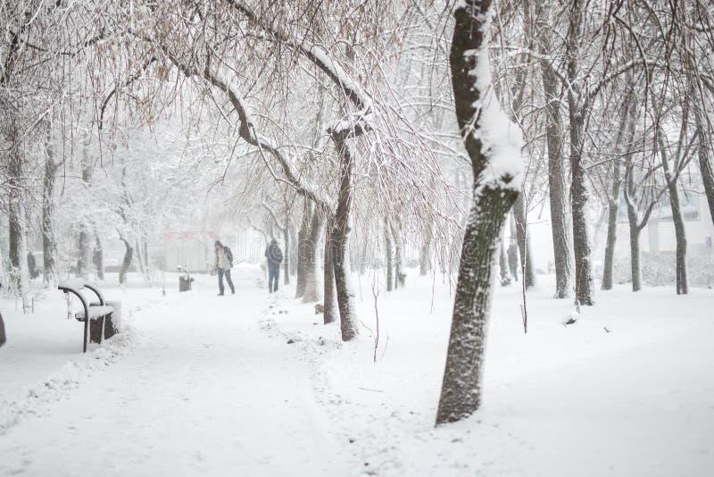 Staden parkerar i vinter Gångbana och bänkar som täckas med snö Stadrekreationsområde efter snöfall Skurkroll för vinterväderprog arkivbild