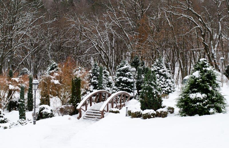 Staden parkerar i vinter, landskapdesign med trädgårdbron och granträd Träd och buskar som täckas av vit snö Vinter arkivfoton