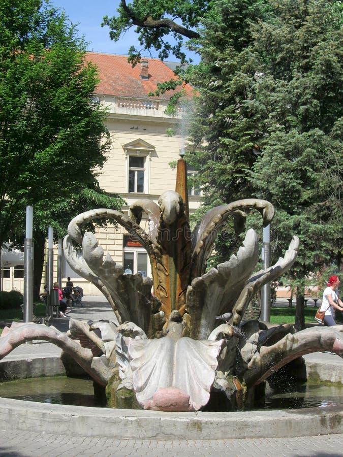 Staden parkerar och stenar blommaspringbrunnen, Sremska Mitrovica, Serbien arkivbilder