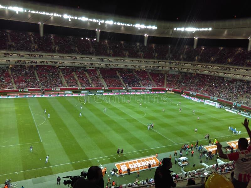 Stadion Guadalajara Mexico royaltyfria bilder