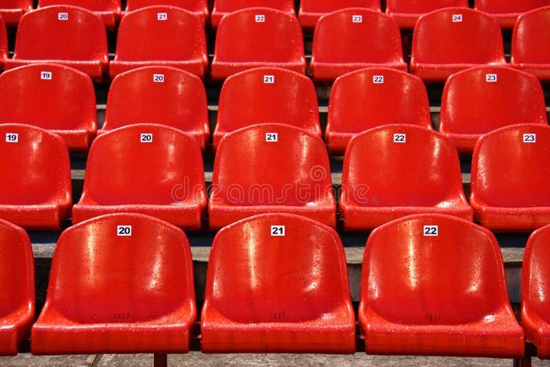 Stadium Chairs Stock Image