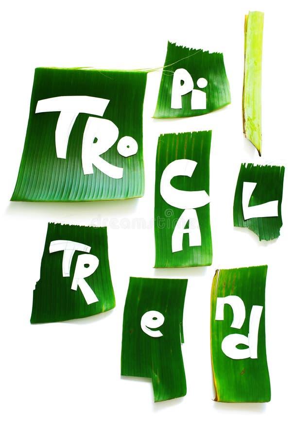 Stadium der Schaffungsschablone TROPISCHE Buchstaben des Wortes stockbild