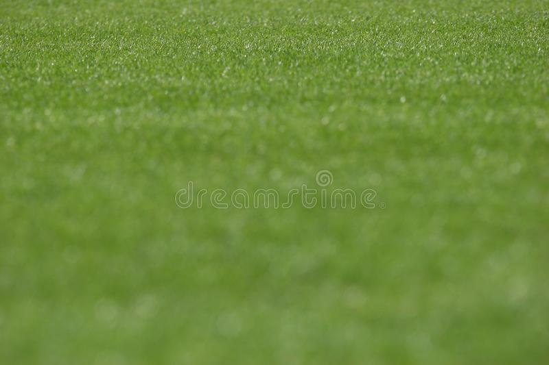 Stadium grass stock photography
