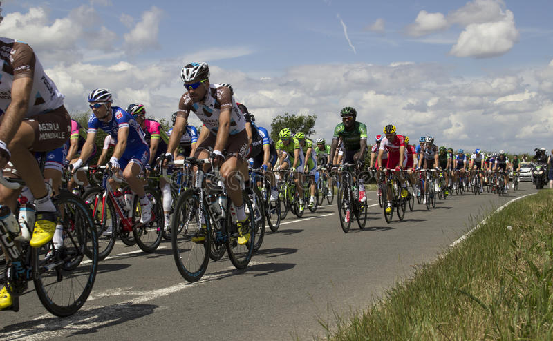 Stadium 3 van Ronde van Frankrijk 2014 Peloton royalty-vrije stock afbeelding