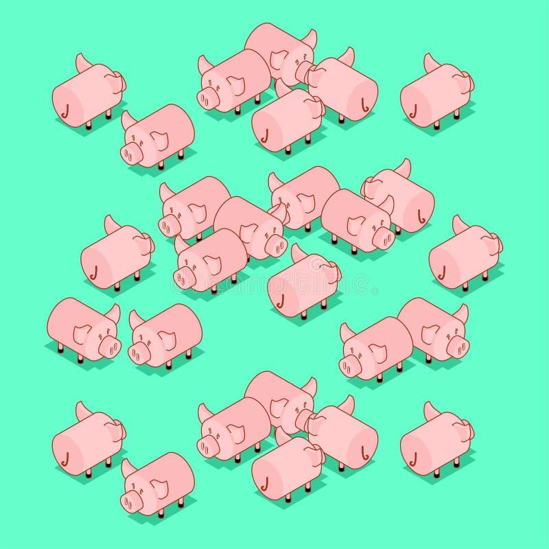 Stado świnie Świniowaty zwierzęta gospodarskie również zwrócić corel ilustracji wektora ilustracji