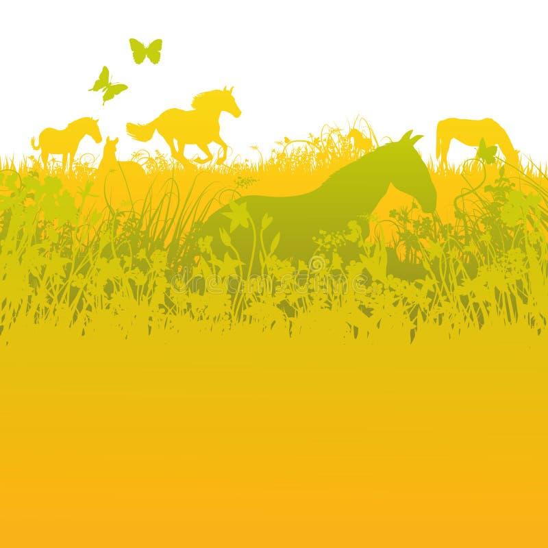 Stado konie na zielonym paśniku royalty ilustracja