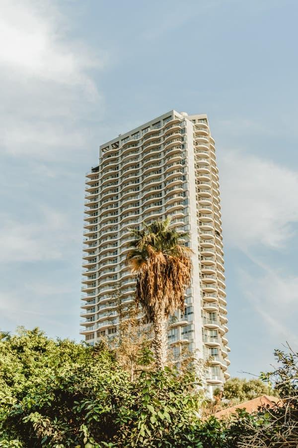 Stads- byggnad i loppstaden Tel Aviv sommar för blå sky royaltyfria foton