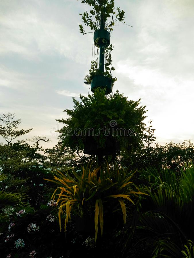 stads centraal park, vizag stock afbeelding