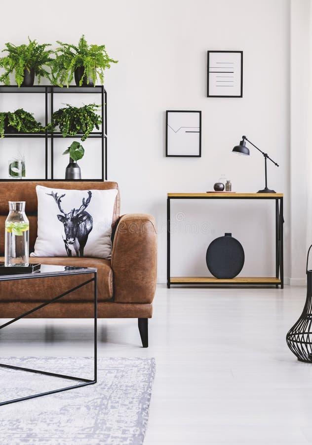 Stads- djungel i modern hemmiljö Krukor med växten på för hylla en lädersoffa bakom arkivbilder