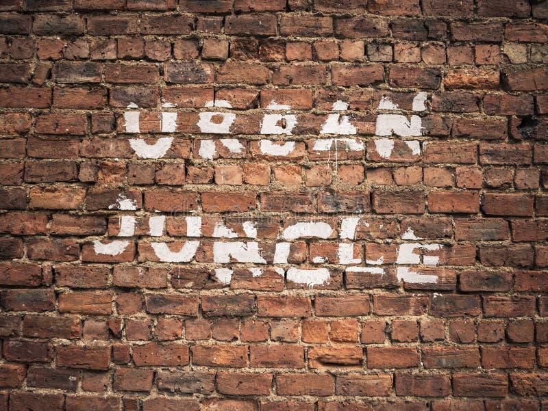 Stads- djungelgrafitti arkivbild