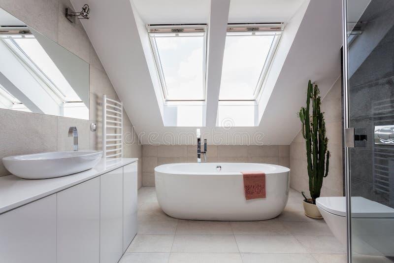 Stads- lägenhet - badrum på loften fotografering för bildbyråer