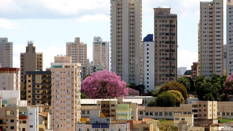 Stads- landskap i Uberlandia, Brasilien arkivbild
