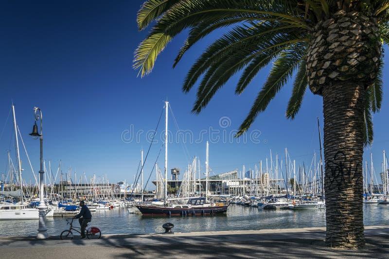Stads- marinapromenad i portvellområde av barcelona Spanien royaltyfri bild
