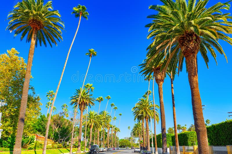 Stads- sikter av det Beverly Hills området och de bostads- byggnaderna på Hollywoodet Hills royaltyfri bild