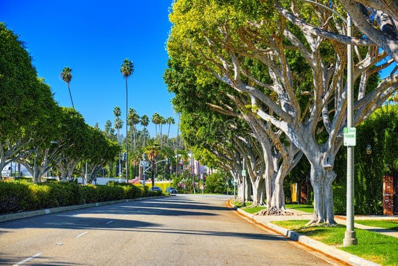 Stads- sikter av det Beverly Hills omr?det och de bostads- byggnaderna p? Hollywoodet Hills royaltyfri bild