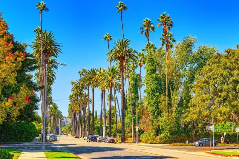 Stads- sikter av det Beverly Hills omr?det och de bostads- byggnaderna p? Hollywoodet Hills arkivbild