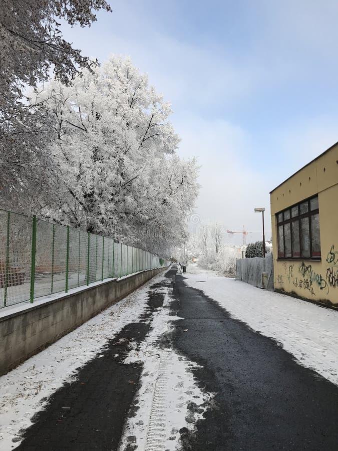 Stads- vinterlandskap arkivfoto