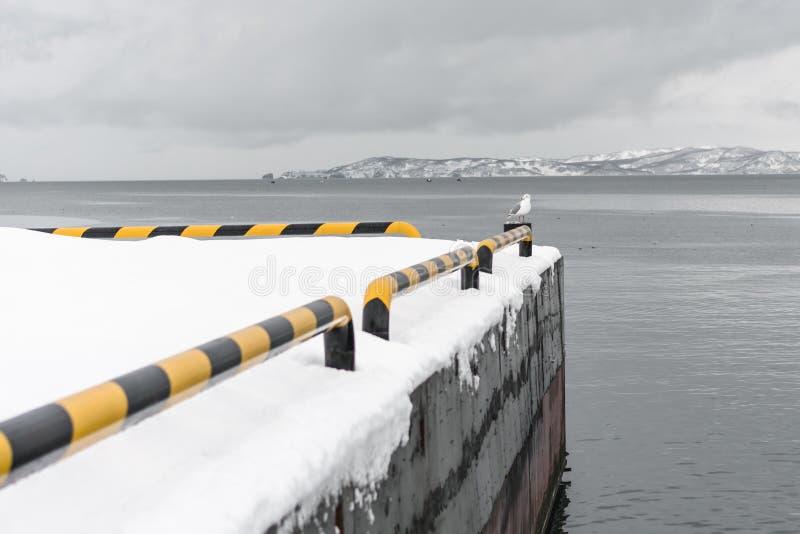 Stads- vinterlandskap på den Kamchatka halvön royaltyfri fotografi