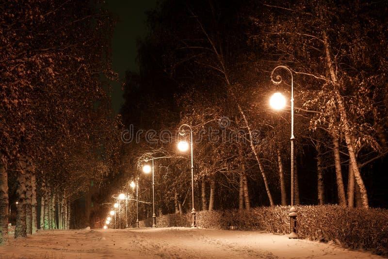 Stadsaveny i vintern fotografering för bildbyråer