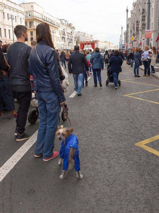 Stadsdag på den Tverskaya gatan, Moskva royaltyfri bild